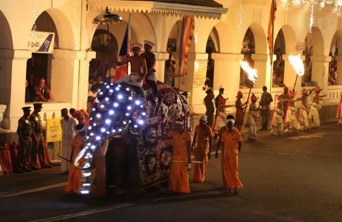 Kandy Procession (Perahera)